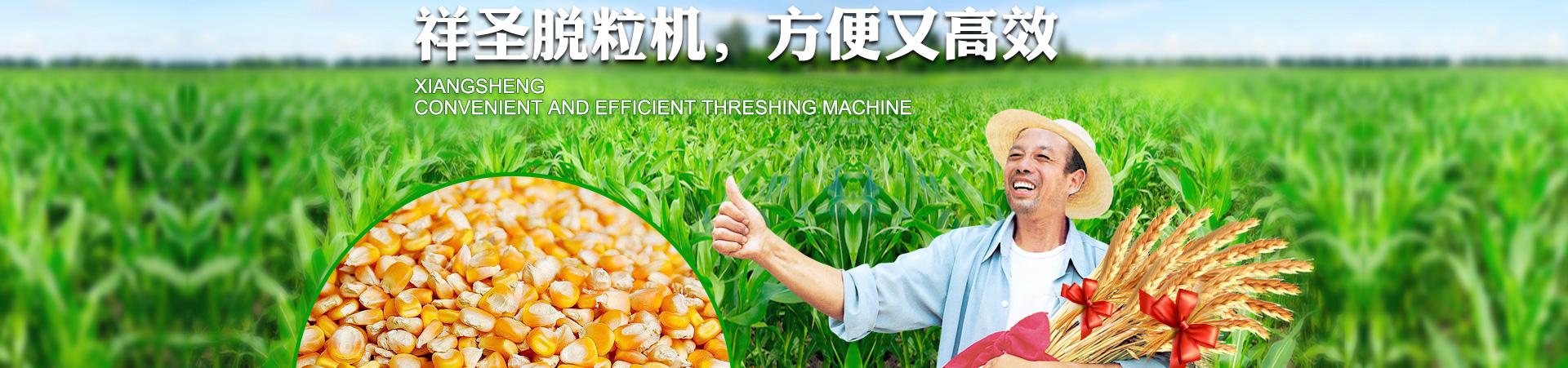 自动玉米脱粒机